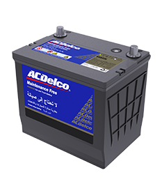 ACDelco Maintenance Free Batteries